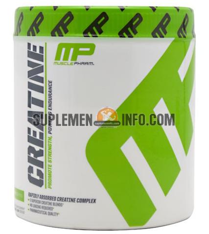 MP Creatin1
